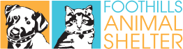 Foothills Animal Shelter